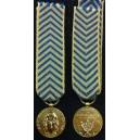 Reconnaissance de la nation - Réduction bronze