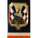 Insigne Porte Drapeau 30 ans - Ordonnance