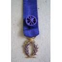 Réduction vermeil - Ordre des Palmes Academiques - Officier